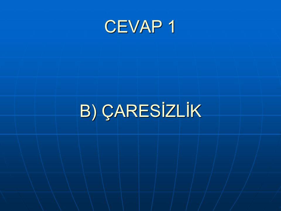 CEVAP 1 B) ÇARESİZLİK