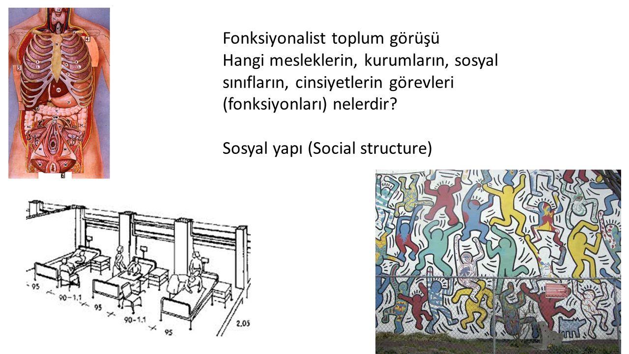 Fonksiyonalist toplum görüşü Hangi mesleklerin, kurumların, sosyal sınıfların, cinsiyetlerin görevleri (fonksiyonları) nelerdir.