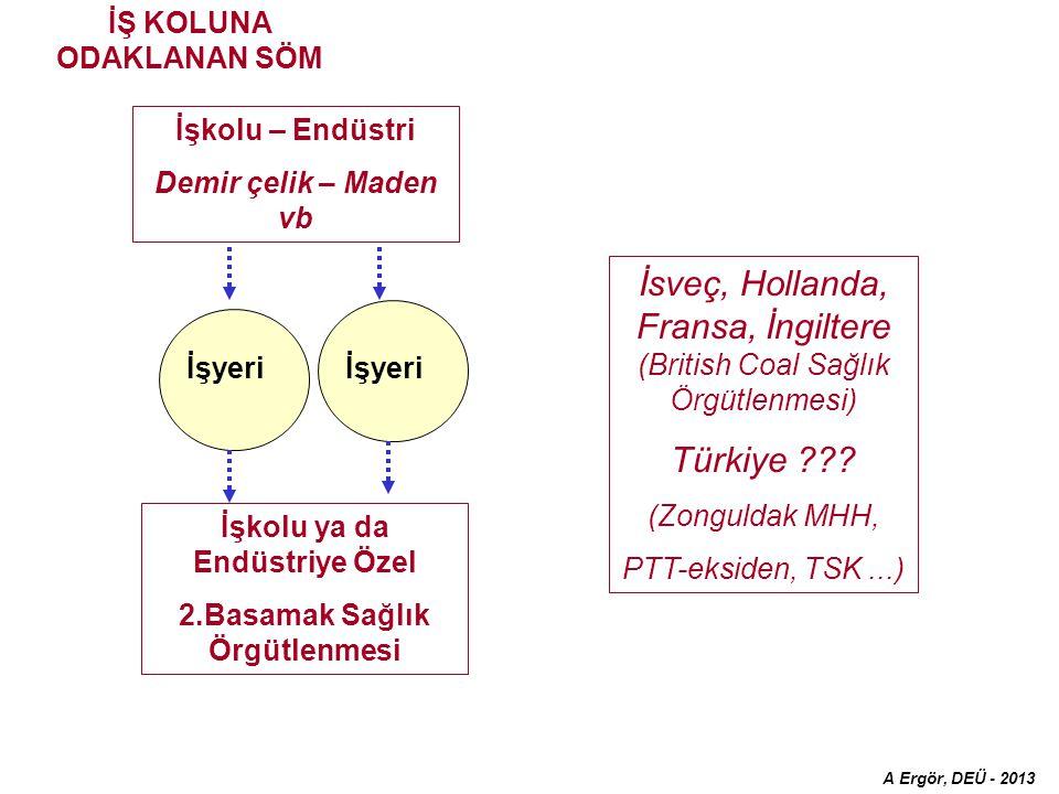 İşkolu – Endüstri Demir çelik – Maden vb İşyeri İsveç, Hollanda, Fransa, İngiltere (British Coal Sağlık Örgütlenmesi) Türkiye .