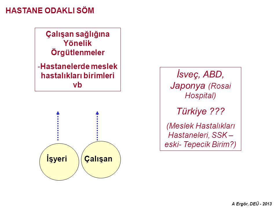 Çalışan sağlığına Yönelik Örgütlenmeler -Hastanelerde meslek hastalıkları birimleri vb Çalışanİşyeri İsveç, ABD, Japonya (Rosai Hospital) Türkiye .