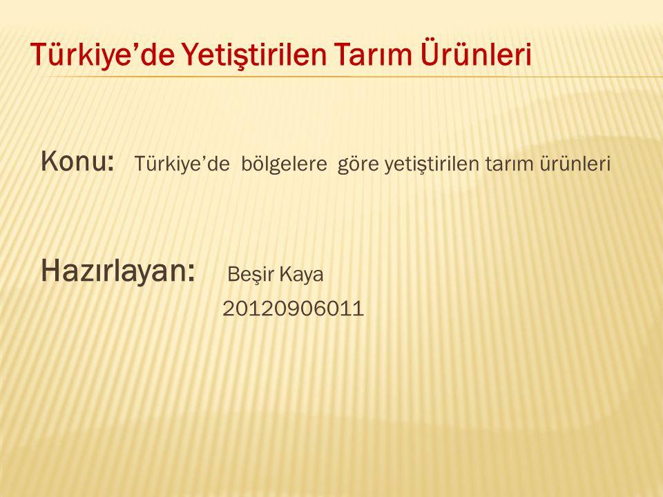 Konu: Türkiye'de bölgelere göre yetiştirilen tarım ürünleri Hazırlayan: Beşir Kaya 20120906011 Türkiye'de Yetiştirilen Tarım Ürünleri