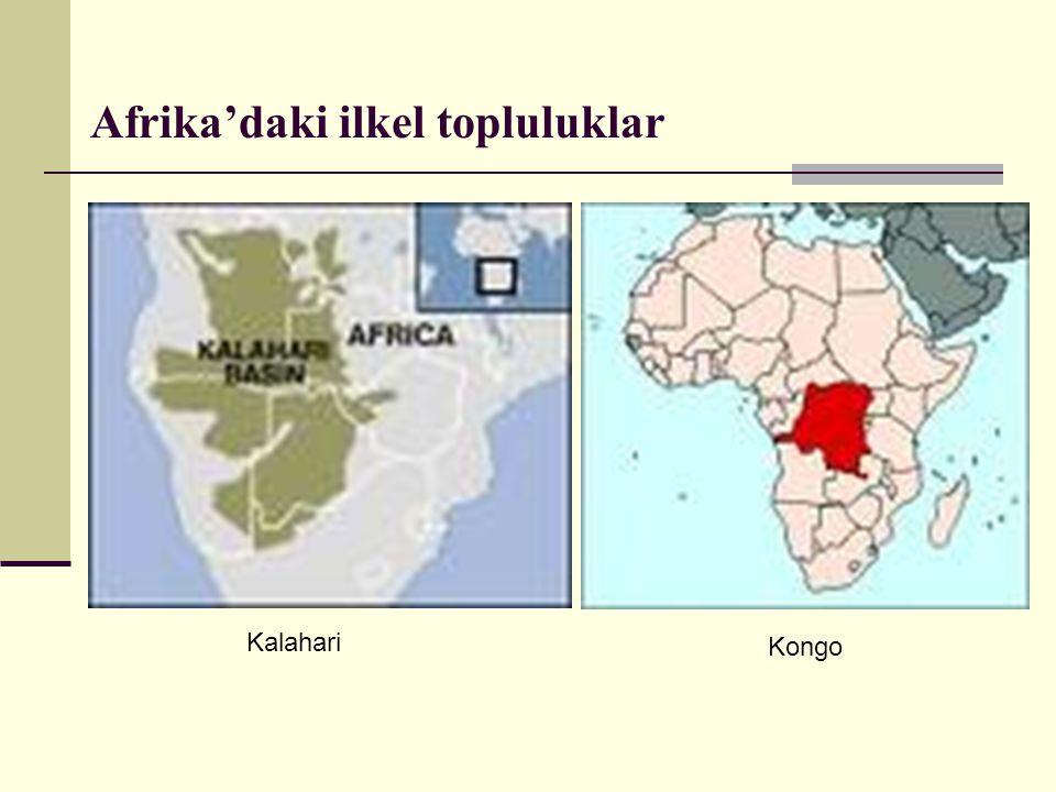 Afrika'daki ilkel topluluklar Kalahari Kongo
