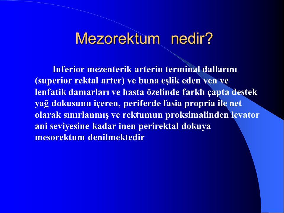 Mezorektum nedir? Mezorektum nedir? Inferior mezenterik arterin terminal dallarını (superior rektal arter) ve buna eşlik eden ven ve lenfatik damarlar