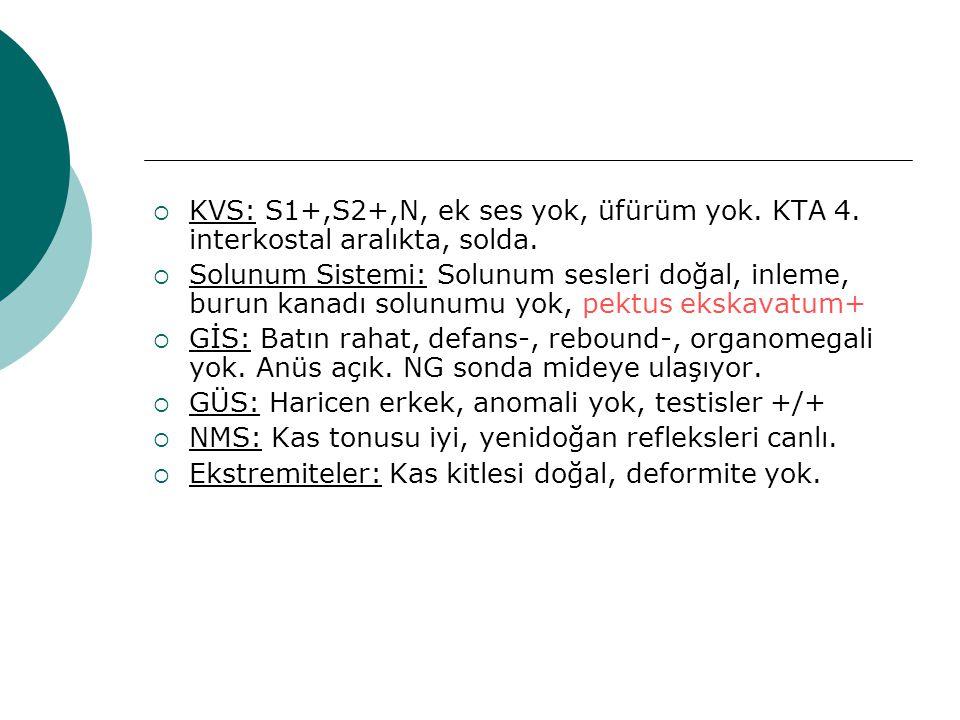  KVS: S1+,S2+,N, ek ses yok, üfürüm yok. KTA 4. interkostal aralıkta, solda.  Solunum Sistemi: Solunum sesleri doğal, inleme, burun kanadı solunumu
