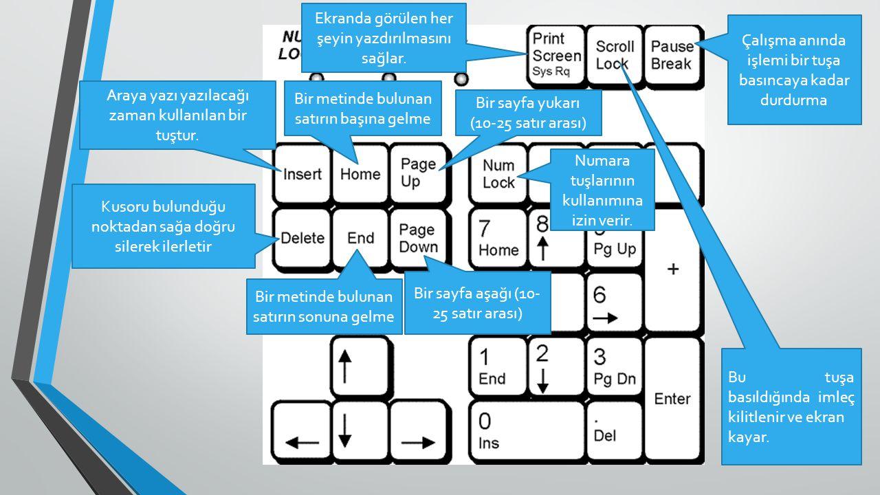 FARE ( MOUSE ) Fare Kullanımı: Windows da bulunan simgelere,programlara ve menülere ulaşmak için kullanılır.