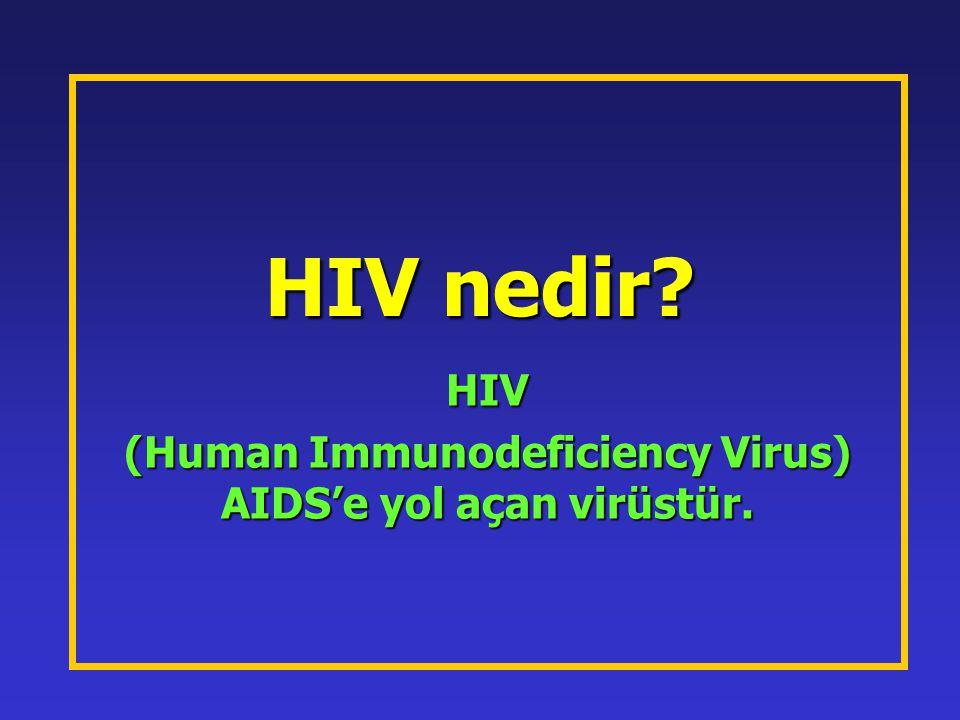 HIV nedir? HIV (Human Immunodeficiency Virus) AIDS'e yol açan virüstür.