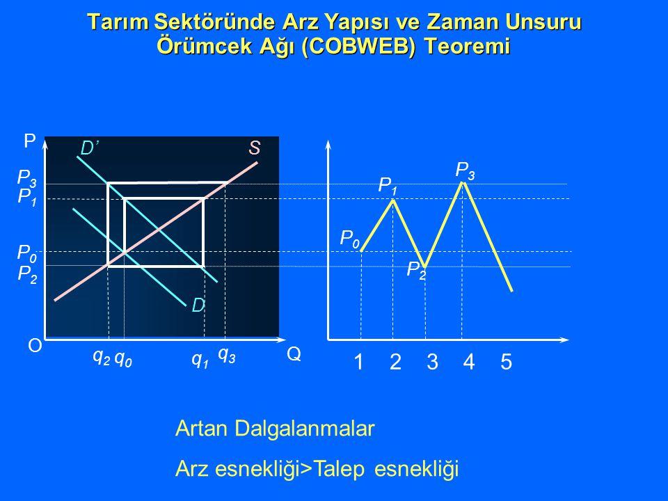 D O Q P D' S P0P0 q0q0 P1P1 q1q1 P0P0 P1P1 P2P2 P3P3 1 2 3 4 5 P2P2 q2q2 P3P3 q3q3 Tarım Sektöründe Arz Yapısı ve Zaman Unsuru Örümcek Ağı (COBWEB) Teoremi Artan Dalgalanmalar Arz esnekliği>Talep esnekliği