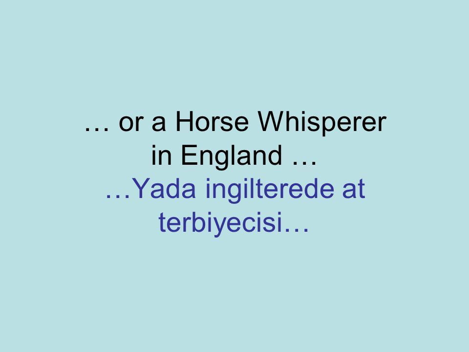 … or a Horse Whisperer in England … …Yada ingilterede at terbiyecisi…