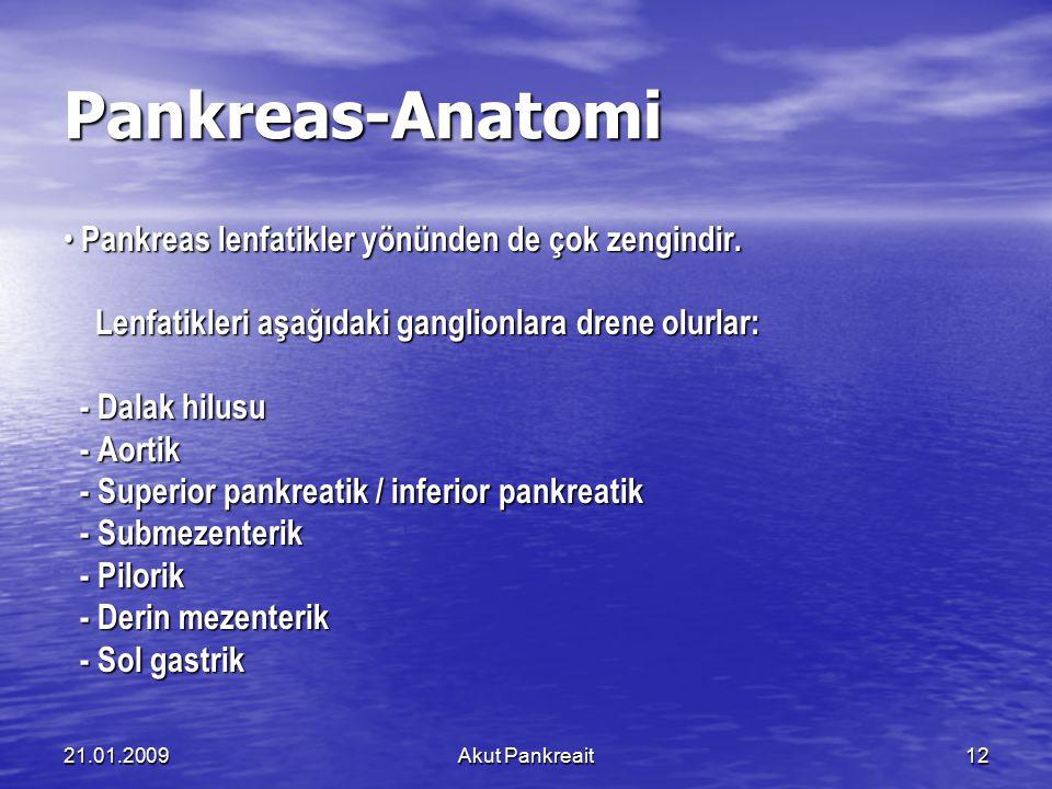 21.01.2009Akut Pankreait12 Pankreas-Anatomi Pankreas lenfatikler yönünden de çok zengindir. Pankreas lenfatikler yönünden de çok zengindir. Lenfatikle