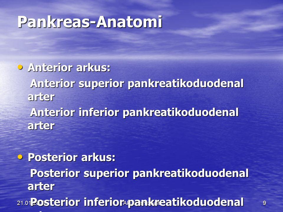 21.01.2009Akut Pankreait9 Pankreas-Anatomi Anterior arkus: Anterior arkus: Anterior superior pankreatikoduodenal arter Anterior superior pankreatikodu
