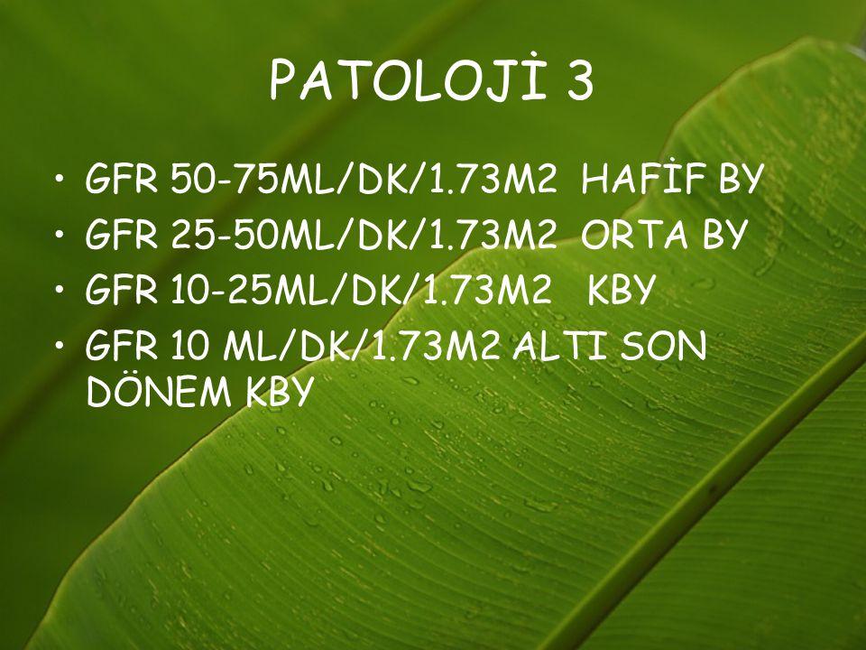 PATOLOJİ 3 GFR 50-75ML/DK/1.73M2 HAFİF BY GFR 25-50ML/DK/1.73M2 ORTA BY GFR 10-25ML/DK/1.73M2 KBY GFR 10 ML/DK/1.73M2 ALTI SON DÖNEM KBY