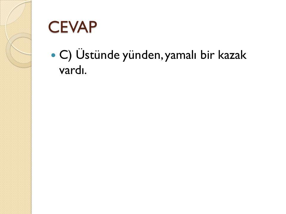 CEVAP D) Van