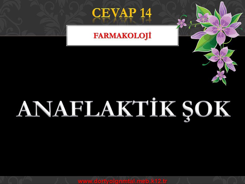 ANATOMİ FİZYOLOJİ www.dortyolgnmtal.meb.k12.tr
