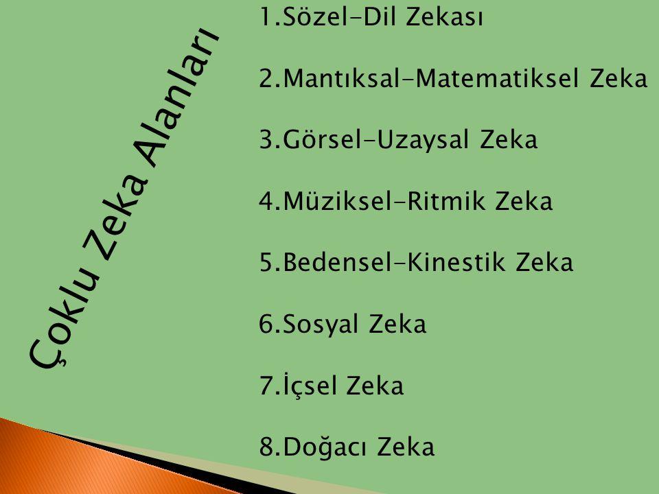 1.Sözel-Dil Zekası 2.Mantıksal-Matematiksel Zeka 3.Görsel-Uzaysal Zeka 4.Müziksel-Ritmik Zeka 5.Bedensel-Kinestik Zeka 6.Sosyal Zeka 7.İçsel Zeka 8.Do