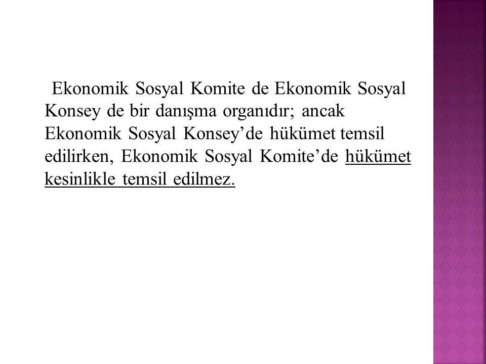Ekonomik Sosyal Komite de Ekonomik Sosyal Konsey de bir danışma organıdır; ancak Ekonomik Sosyal Konsey'de hükümet temsil edilirken, Ekonomik Sosyal K