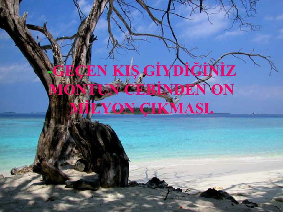 -KUMSAL & ORMAN.