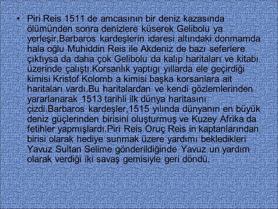 Piri Reis 1516-1517 yıllarında İstanbul a geldiğinde tekrar Osmanlı donanmasının hizmetine girdi.Derya Beyi rütbesini aldı ve Mısır seferine gemi komutanı olarak katıldı.Donanmanın bir kısmı ile Kahire geçip Nil ırmağını çizme fırsatı buldu.Ünlü denizci, İskenderiye nin ele geçirilmesinde gösterdiği başarılar ile padişahın övgüsünü kazandı ve sefer sırasında haritasını padişaha sundu.Bazı tarihçilere göre,Osmanlı padişahı dünya haritasına bakmış ve 'Dünya ne kadar küçük..' demiştir.Sonra da haritayı ikiye bölmüş ve 'biz doğu tarafını elimizde tutacağız..' demiştir.Padişah daha sonra 1929 da bulunacak olan diğer yarıyı atmıştır.