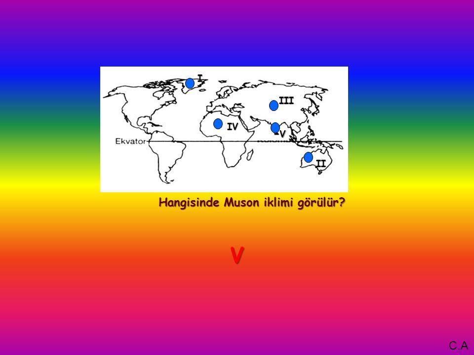 I Hangisinde Muson iklimi görülür V IV III II V C.A
