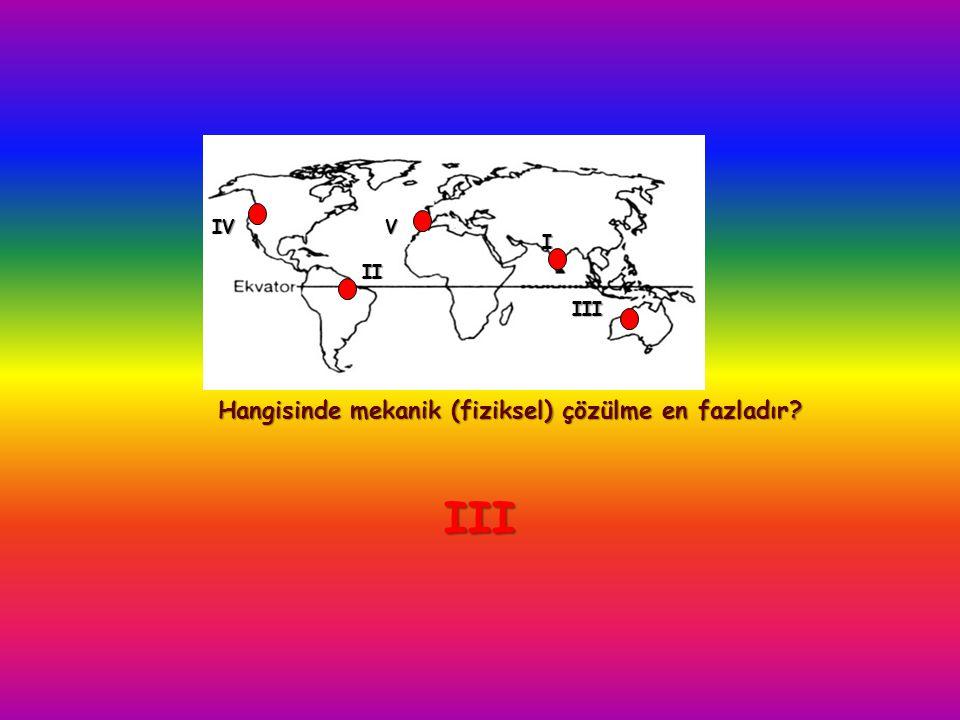 I Hangisinde mekanik (fiziksel) çözülme en fazladır? VIV III II III