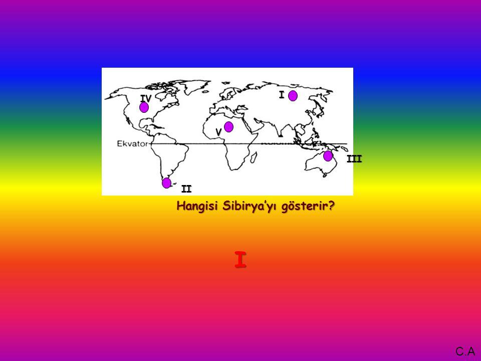 I Hangisi Sibirya'yı gösterir V IV III II I C.A