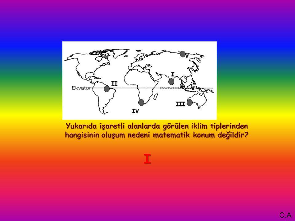 I Yukarıda işaretli alanlarda görülen iklim tiplerinden hangisinin oluşum nedeni matematik konum değildir.