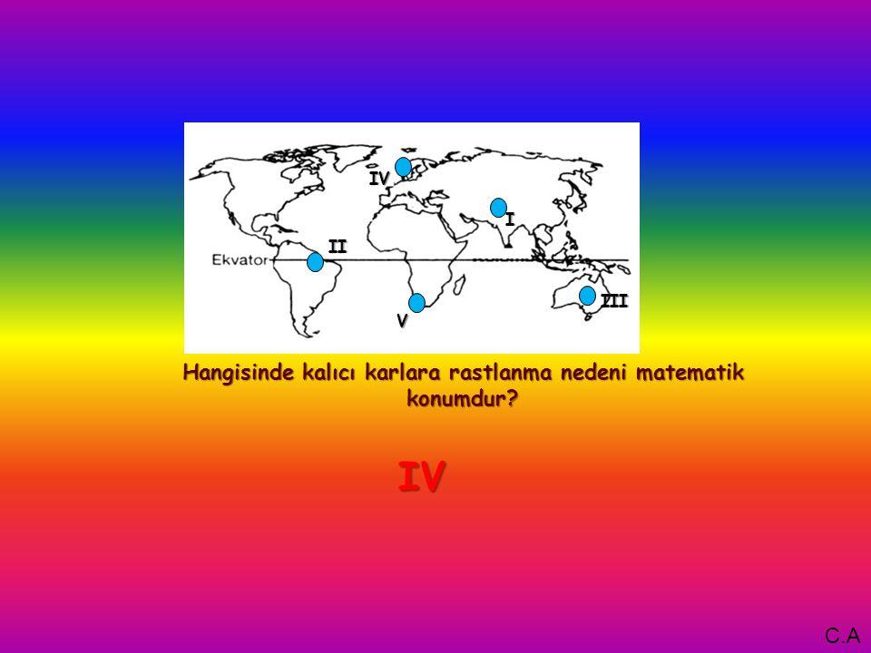 I Hangisinde kalıcı karlara rastlanma nedeni matematik konumdur V IV III II IVIVIVIV C.A