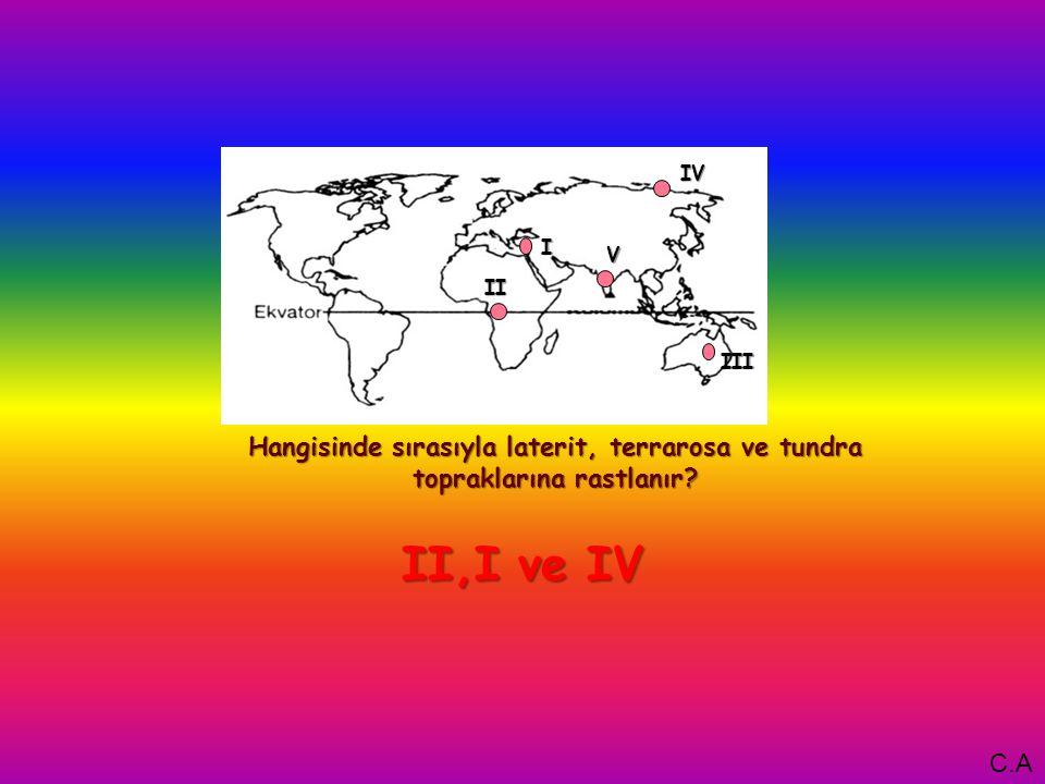I Hangisinde sırasıyla laterit, terrarosa ve tundra topraklarına rastlanır.