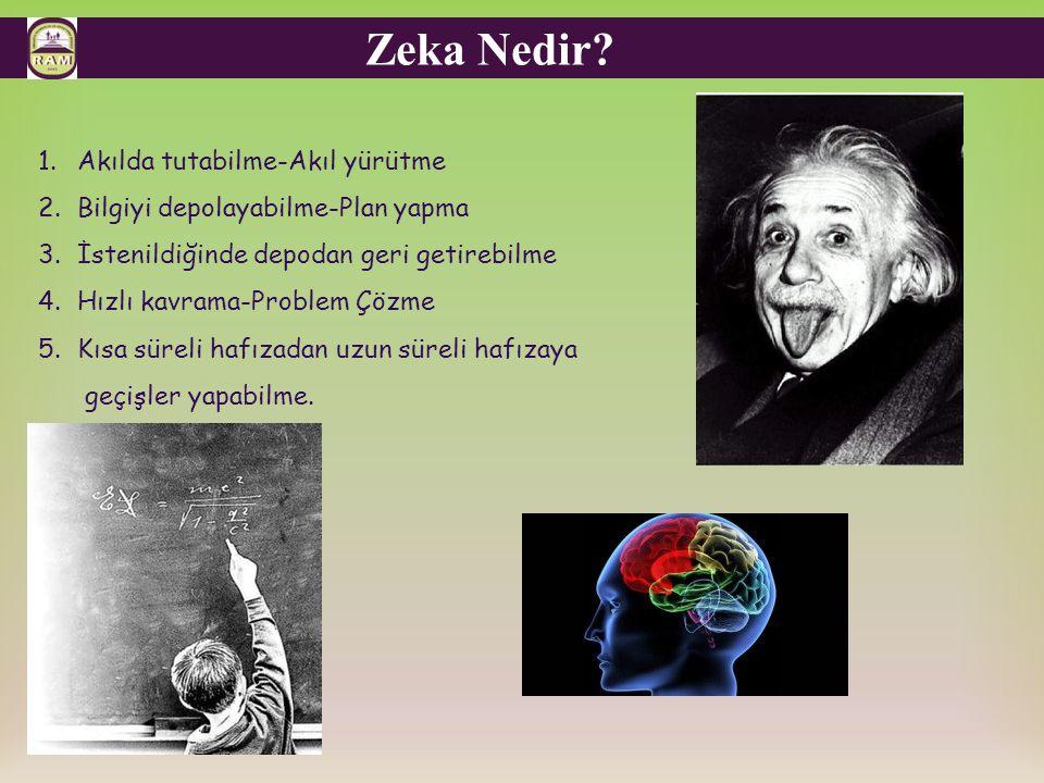 Zeka Nedir.