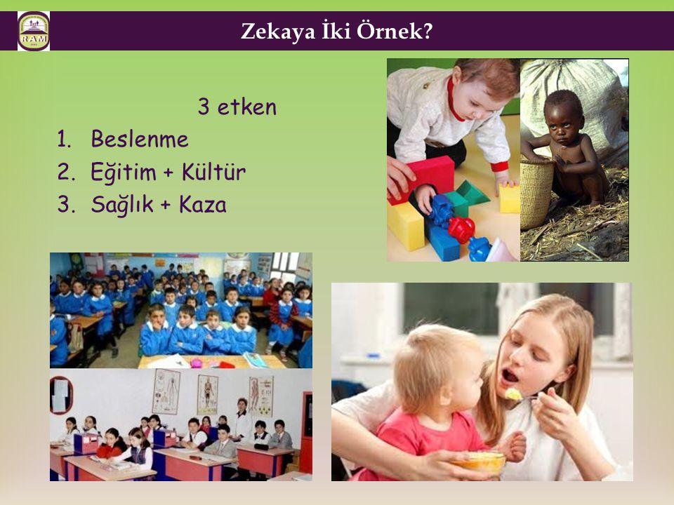 Zekaya İki Örnek? 3 etken 1.Beslenme 2.Eğitim + Kültür 3.Sağlık + Kaza
