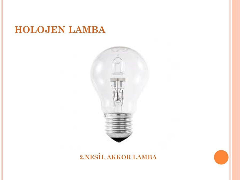 HOLOJEN LAMBA 2.NESİL AKKOR LAMBA