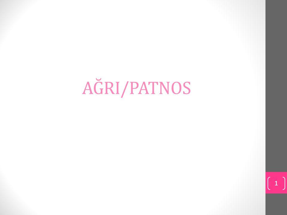 AĞRI/PATNOS 1