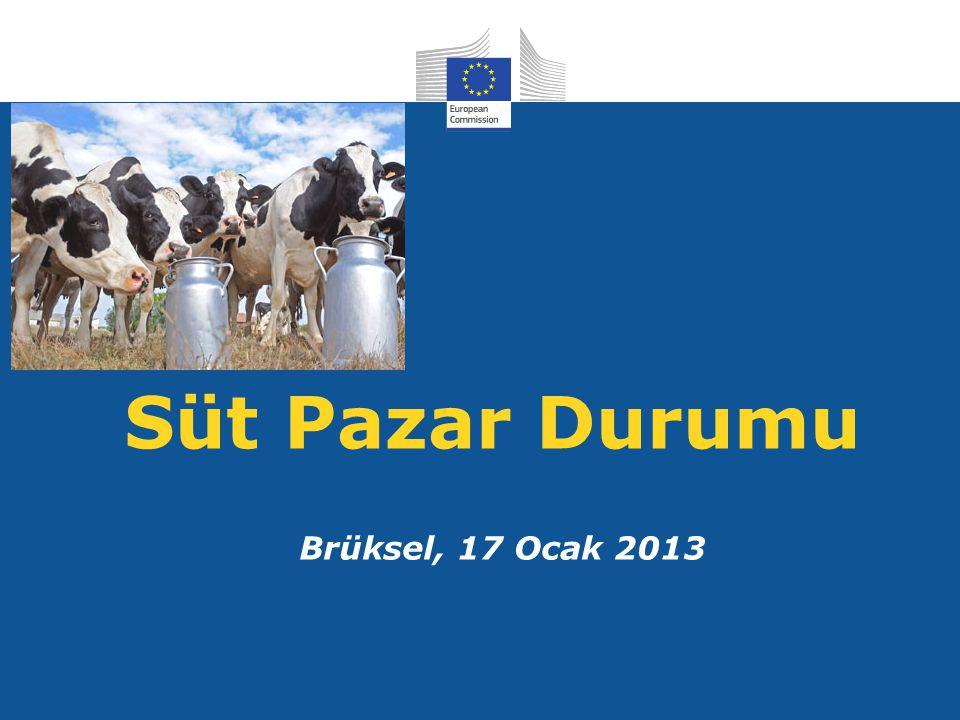 Süt Pazar Durumu Brüksel, 17 Ocak 2013