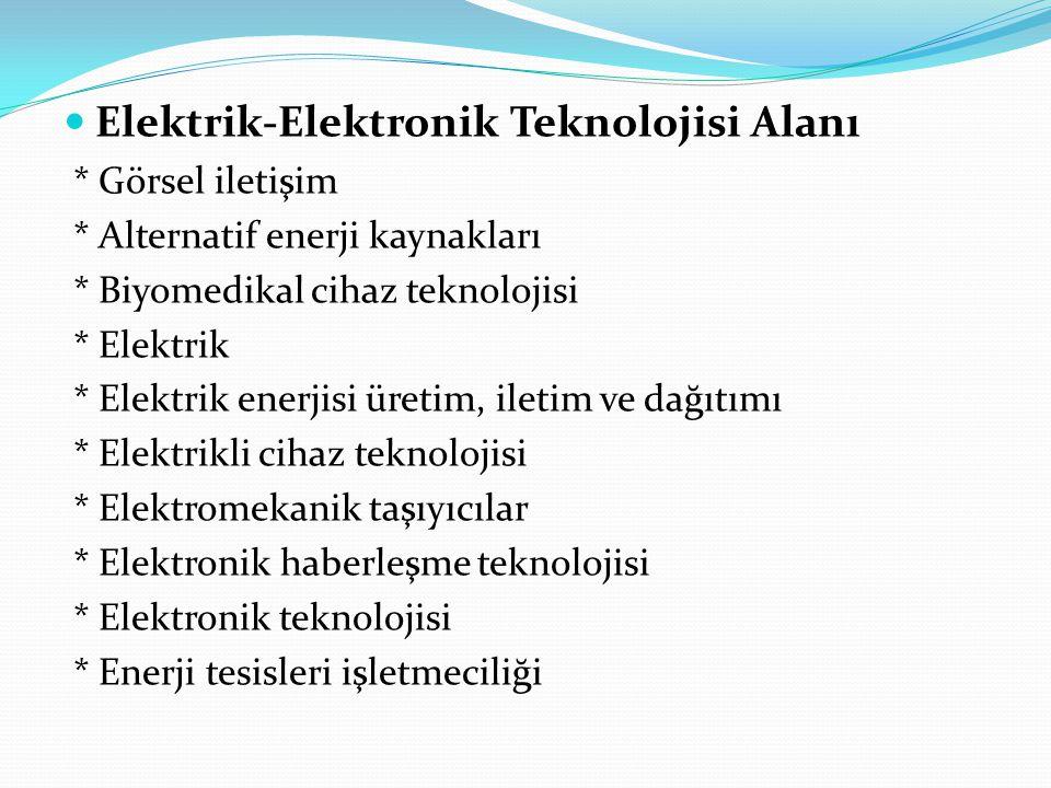Elektrik-Elektronik Teknolojisi Alanı * Görsel iletişim * Alternatif enerji kaynakları * Biyomedikal cihaz teknolojisi * Elektrik * Elektrik enerjisi