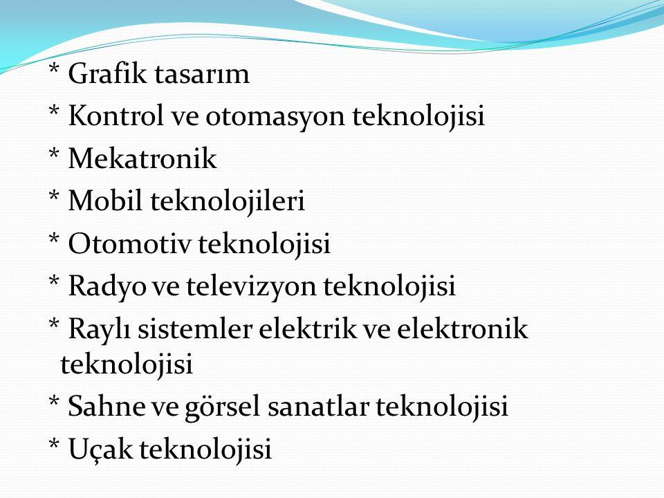 * Grafik tasarım * Kontrol ve otomasyon teknolojisi * Mekatronik * Mobil teknolojileri * Otomotiv teknolojisi * Radyo ve televizyon teknolojisi * Rayl