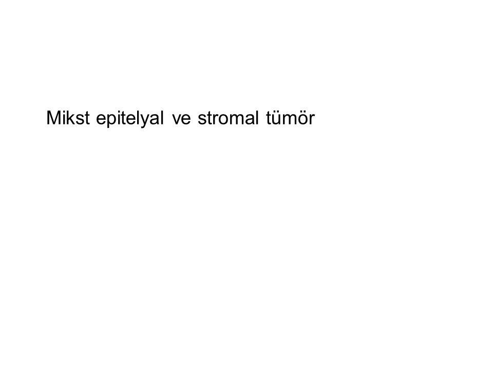 Mikst epitelyal ve stromal tümör