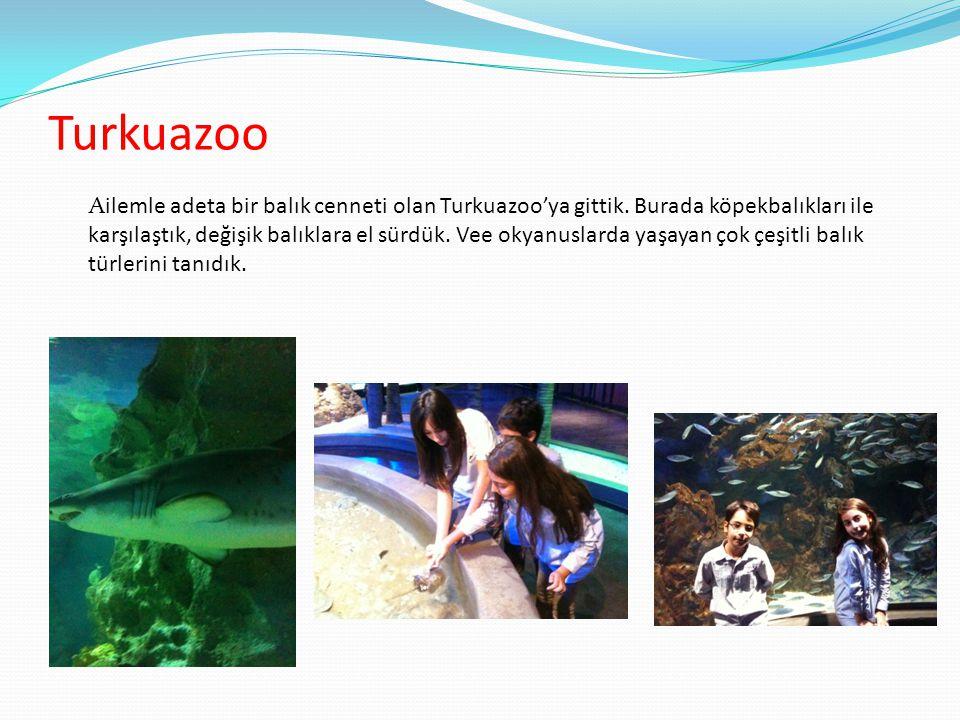Turkuazoo Ailemle adeta bir balık cenneti olan Turkuazoo'ya gittik. Burada köpekbalıkları ile karşılaştık, değişik balıklara el sürdük. Vee okyanuslar