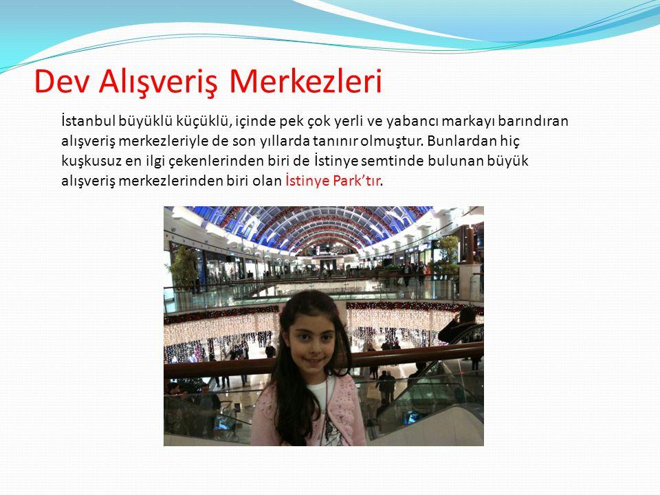Dev Alışveriş Merkezleri İstanbul büyüklü küçüklü, içinde pek çok yerli ve yabancı markayı barındıran alışveriş merkezleriyle de son yıllarda tanınır