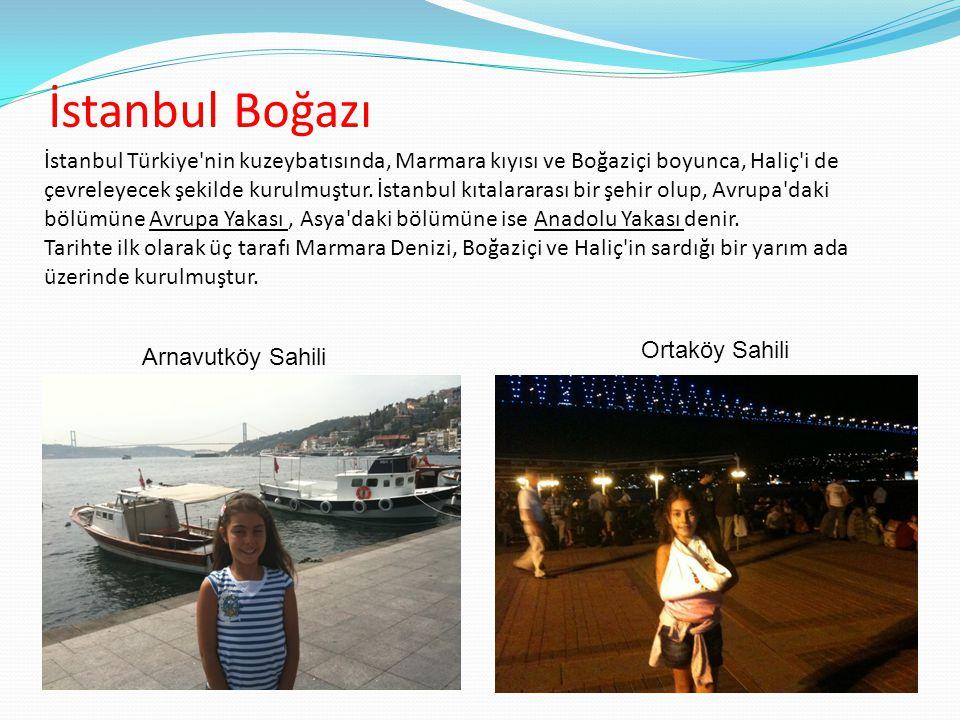 İstanbul Boğazı Arnavutköy Sahili Ortaköy Sahili İstanbul Türkiye'nin kuzeybatısında, Marmara kıyısı ve Boğaziçi boyunca, Haliç'i de çevreleyecek şeki