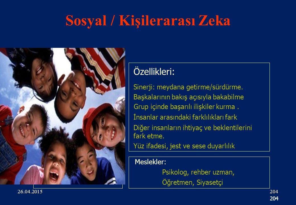 204 Özellikleri: Meslekler: Psikolog, rehber uzman, Öğretmen, Siyasetçi Sinerji: meydana getirme/sürdürme.