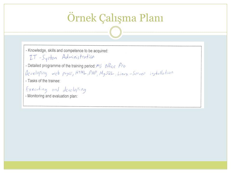 Örnek Çalışma Planı