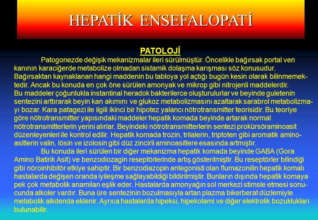 HEPATİK ENSEFALOPATİ PATOLOJİ Patogonezde değişik mekanizmalar ileri sürülmüştür.