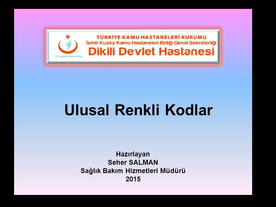 Ulusal Renkli Kodlar Hazırlayan Seher SALMAN Sağlık Bakım Hizmetleri Müdürü 2015