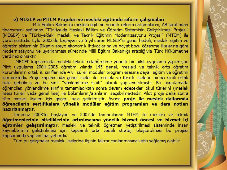 e) MEGEP ve MTEM Projeleri ve mesleki eğitimde reform çalışmaları Milli Eğitim Bakanlığı mesleki eğitime yönelik reform çalışmalarını, AB tarafından finansmanı sağlanan Türkiye'de Mesleki Eğitim ve Öğretim Sisteminin Geliştirilmesi Projesi (MEGEP) ve Türkiye'deki Mesleki ve Teknik Eğitimin Modernizasyonu Projesi (MTEM) ile yürütmektedir.