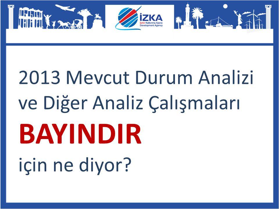 2013 Mevcut Durum Analizi ve Diğer Analiz Çalışmaları BAYINDIR için ne diyor?