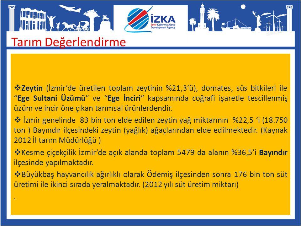 """ Zeytin (İzmir'de üretilen toplam zeytinin %21,3'ü), domates, süs bitkileri ile """"Ege Sultani Üzümü"""" ve """"Ege İnciri"""" kapsamında coğrafi işaretle tesci"""