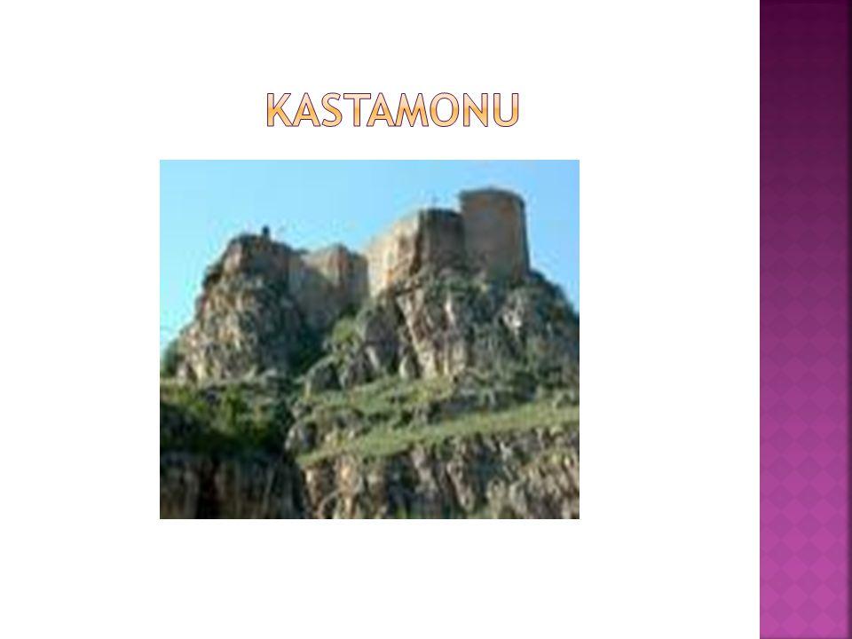  Karaman oğullarıyla, Osmanlı Devletinin kıyasıya savaşa tutuştuğu yıllarda, Karaman halkı savaşlardan çok çekmiş; ezilmişler, evleri, barkları, malları çok zarar görmüş.