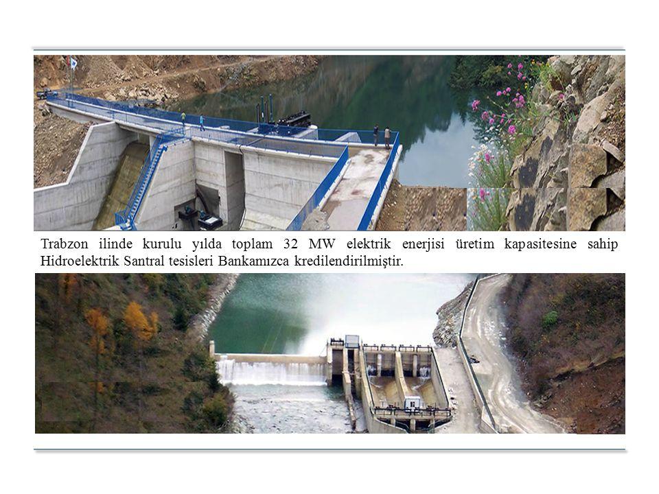 Trabzon ilinde kurulu yılda toplam 32 MW elektrik enerjisi üretim kapasitesine sahip Hidroelektrik Santral tesisleri Bankamızca kredilendirilmiştir.