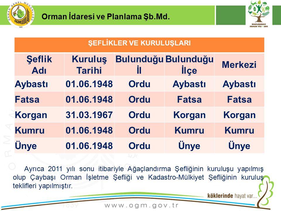 16/12/2010 Kurumsal Kimlik 4 Orman İdaresi ve Planlama Şb.Md.