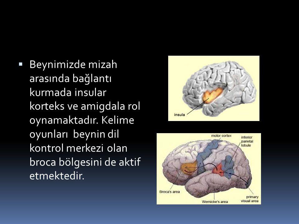  Beynimizde mizah arasında bağlantı kurmada insular korteks ve amigdala rol oynamaktadır. Kelime oyunları beynin dil kontrol merkezi olan broca bölge