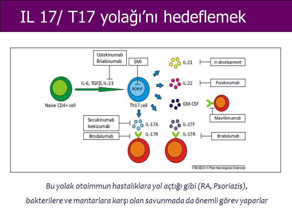 IL 17/ T17 yolağı'nı hedeflemek Bu yolak otoimmun hastalıklara yol açtığı gibi (RA, Psoriazis), bakterilere ve mantarlara karşı olan savunmada da önem
